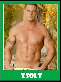Zsolt Male Stripper